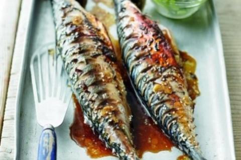 mackerel - SS@B (2)