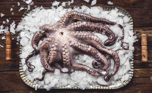 A delicacy in many cuisines, octopus has long been under-used here, despite being abundant in our waters. But that's changing, as our cooking gets ever more adventurous, says Rachel Walker.