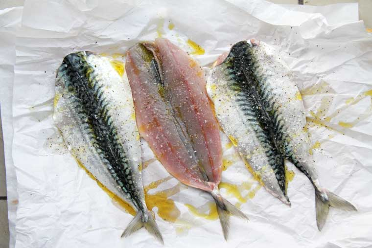 Mackerel-on-paperMed760