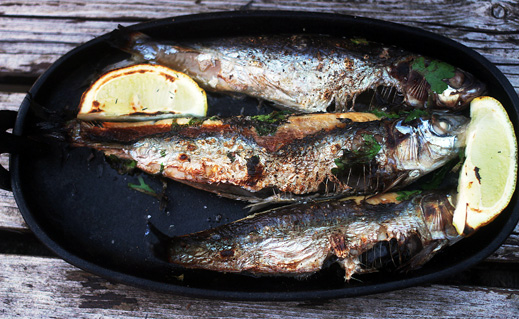 Marcus Bawdon sings the praises of the new breed of small, portable, relatively inexpensive wood-fired ovens: perfect for creating sizzling seafood al fresco.