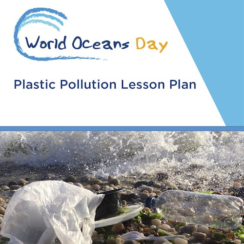 world oceans day plastic pollution plan