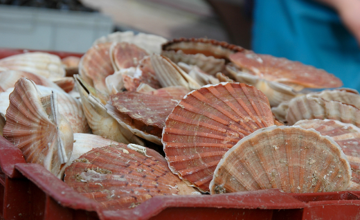 Visit Rye Bay for the perfect opportunity to indulge in seafood delights