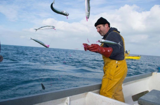 David Simon handlining for Mackerel in Cornwall