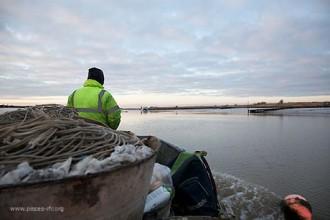 sustainablefishing1